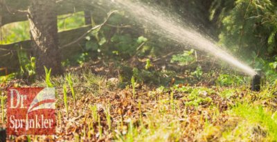 Fall Lawn Preparation Dr. Sprinkler Repair Utah